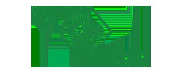 ersi logo